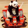 Pandamasque