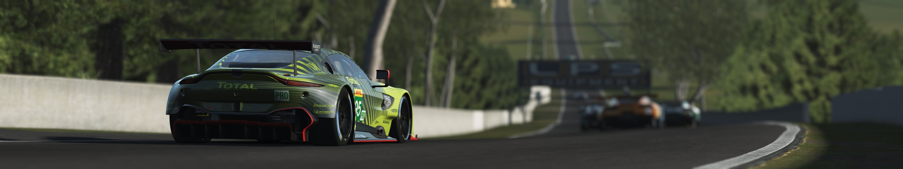 3 rF2 ASTON GTE at BATHURST copy.jpg