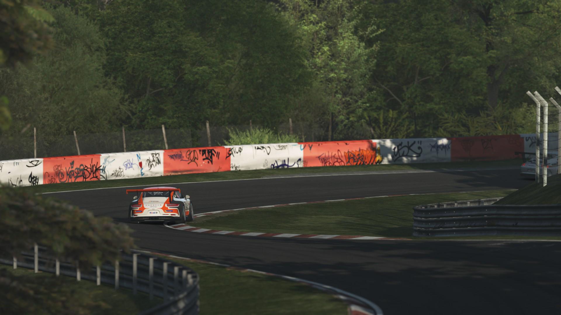 Porsche_GT3_Cup_02.jpg