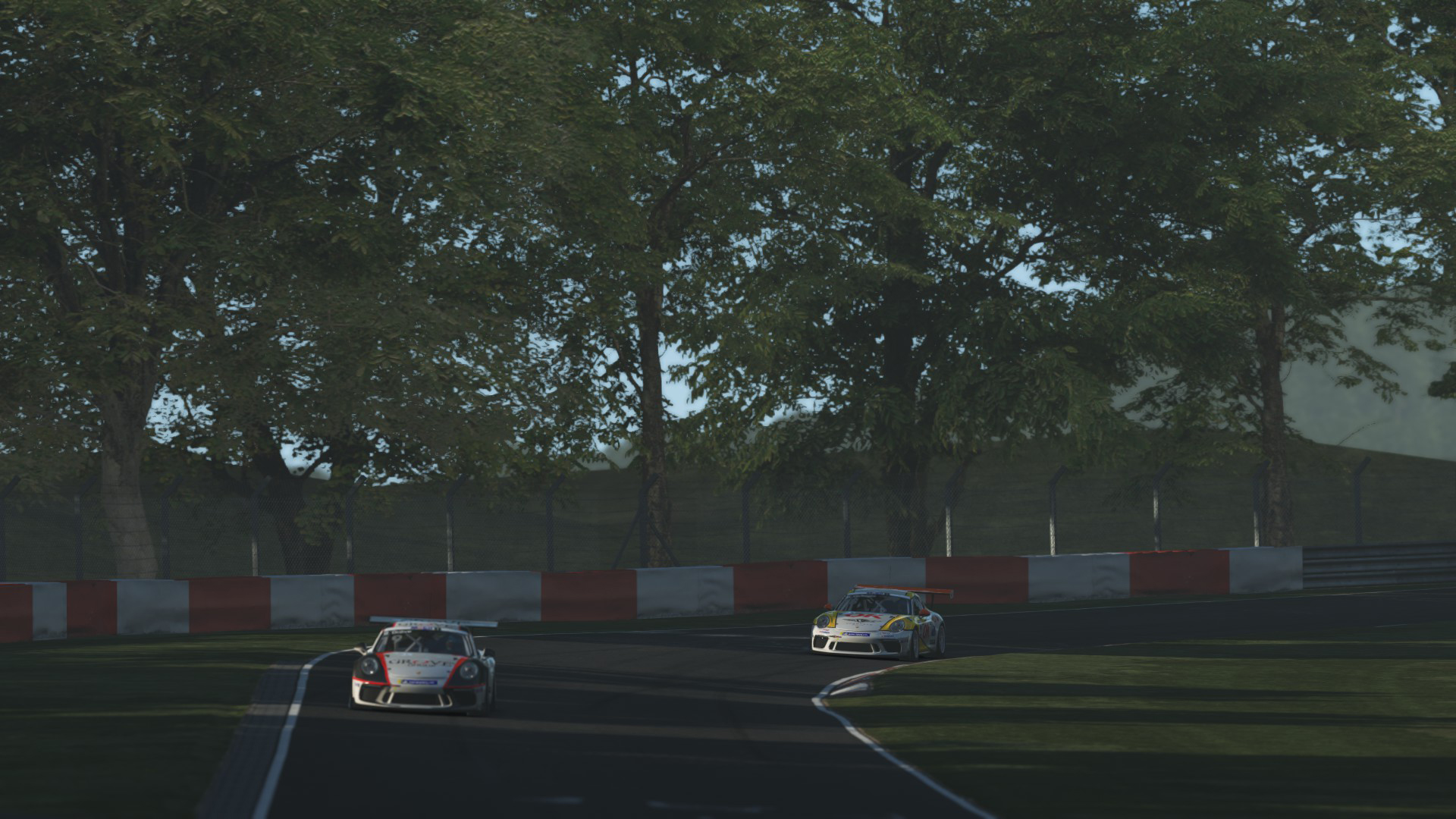 Porsche_GT3_Cup_07.jpg