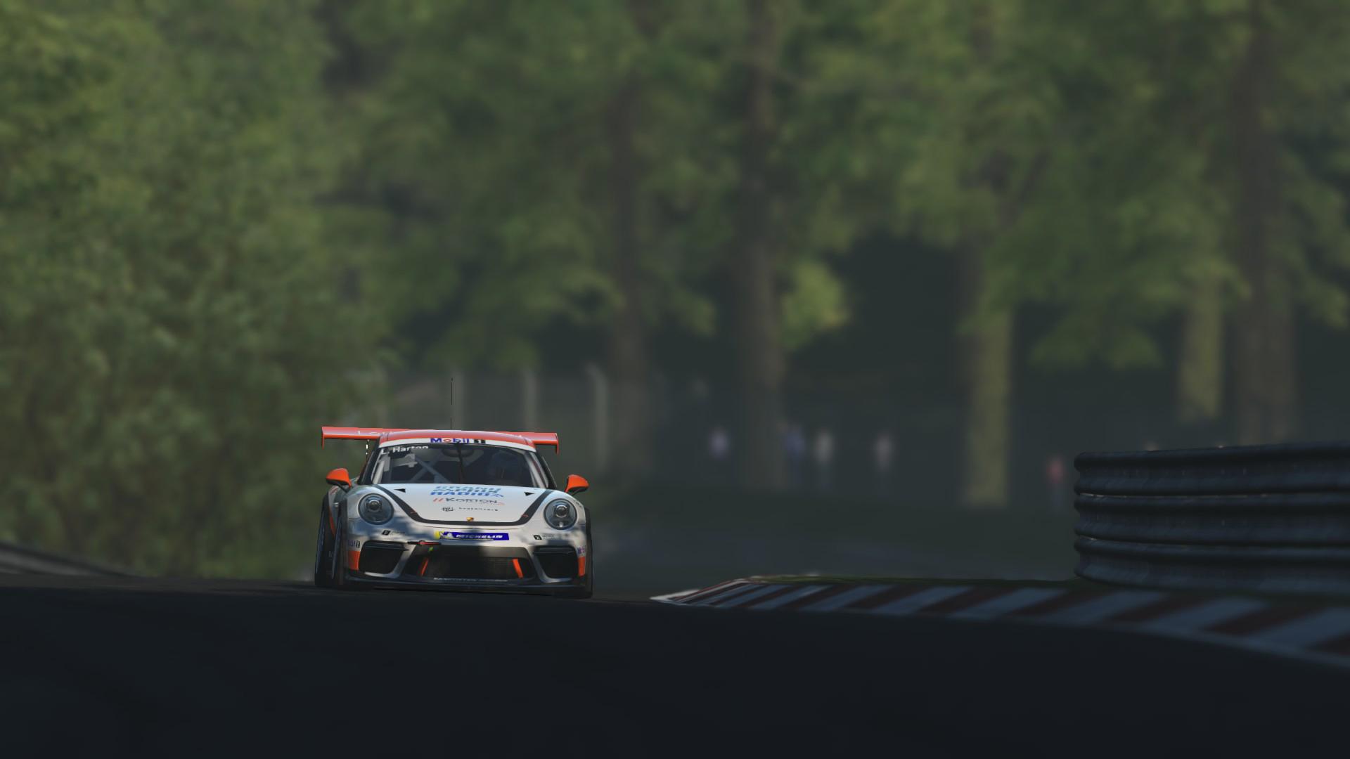 Porsche_GT3_Cup_13.jpg