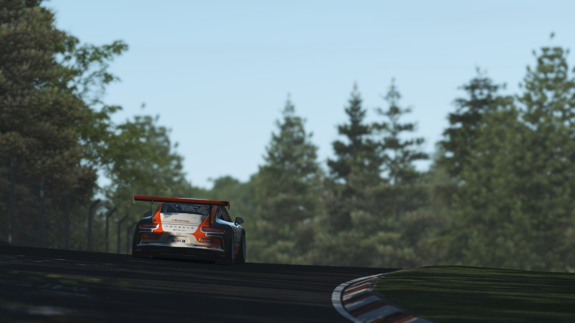 Porsche_GT3_Cup_17.jpg