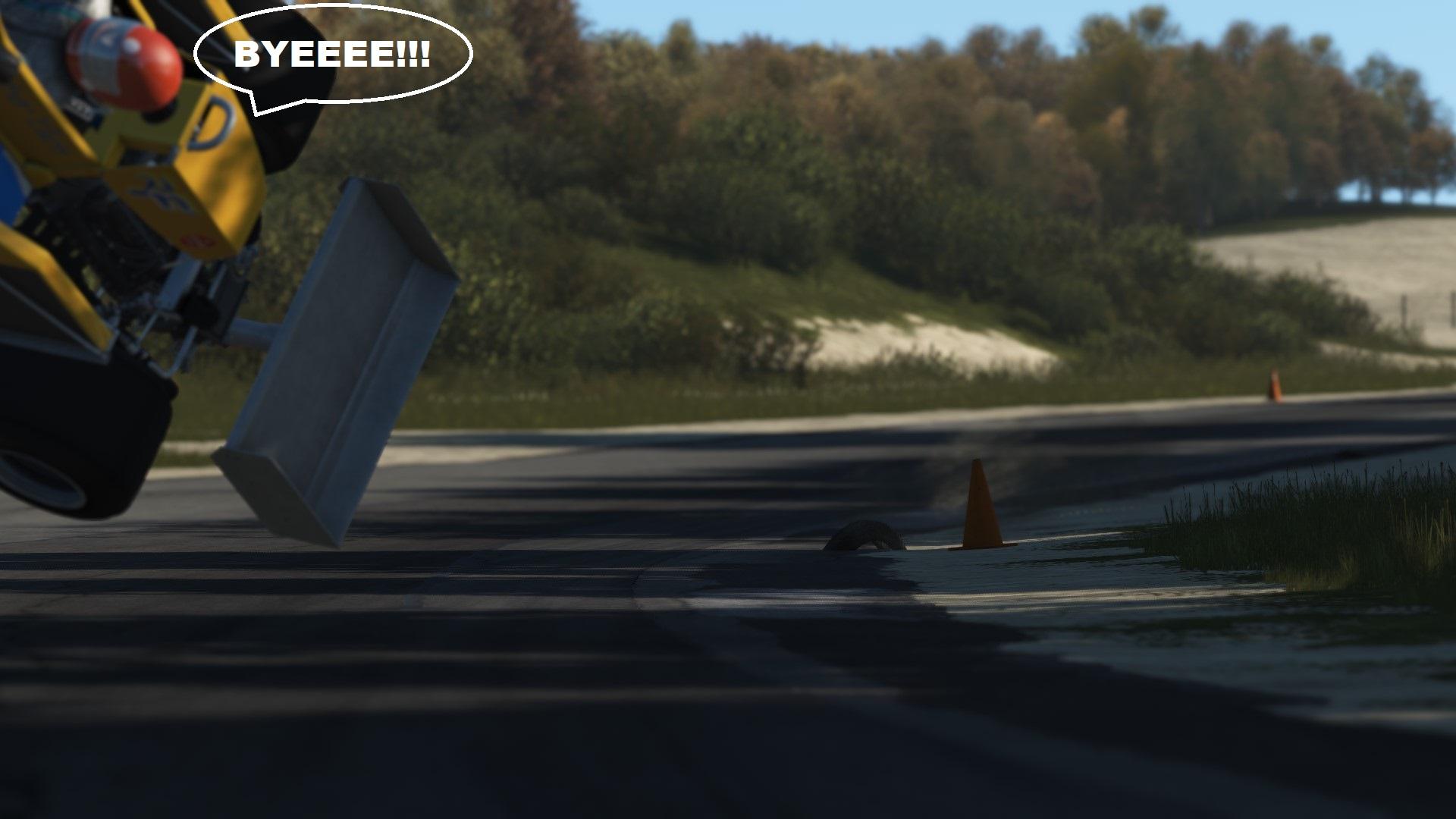 swoosh2.jpg